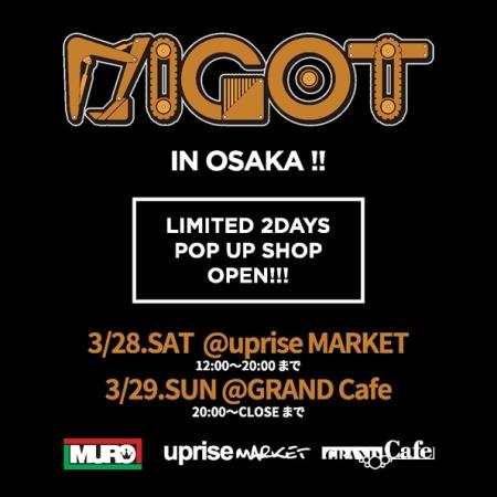 DIGOT_POPUP_web